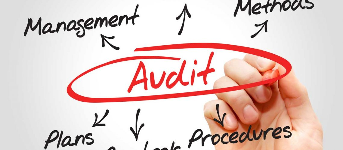 Lead auditor o auditor interno